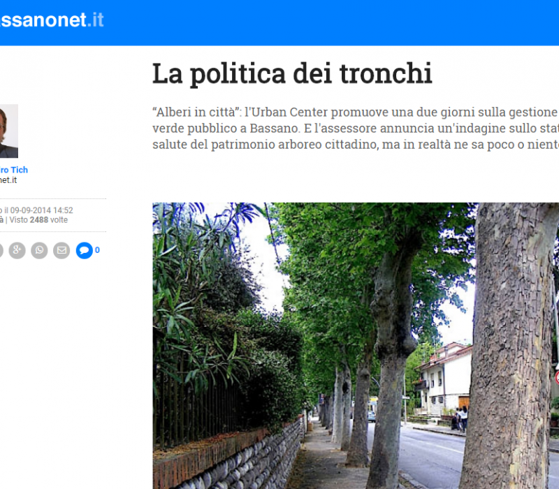 La politica dei tronchi – Bassanonet